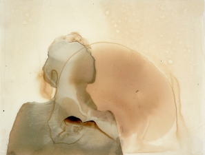 <h5>Fluid Remnant</h5><p>Walnut Ink on Yupo, 8.75 x 11.5 inches, 2011</p>